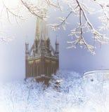 里加在冬天 免版税库存图片