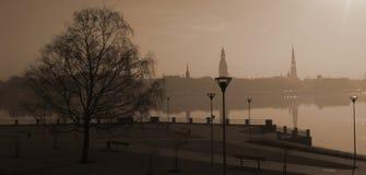 里加在日出前的市视图 免版税库存图片