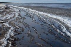 里加墨西哥湾海岸 库存照片