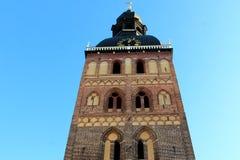 里加大教堂 免版税库存照片
