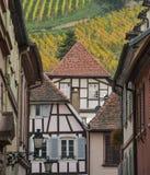 里博维尔,下莱茵省,阿尔萨斯,外部老半木料半灰泥的房子,葡萄园 图库摄影