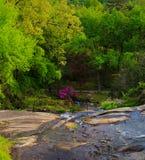 里士满VA有树的,喷泉,小山,在日落的豪宅美国Maymount 图库摄影