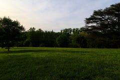 里士满VA有树的,喷泉,小山,在日落的豪宅美国Maymount 库存图片
