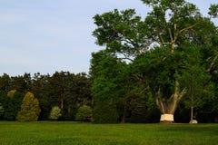 里士满VA有树的,喷泉,小山,在日落的豪宅美国Maymount 免版税库存照片