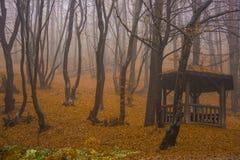 里拉山脉山在秋天 库存图片