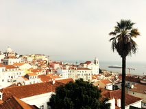里斯本天线,鸟景色 里斯本,葡萄牙全景地平线 免版税库存图片