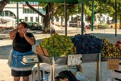 里斯本,葡萄牙- Septmember 19日2016年:卖在Cais前面的老妇人葡萄做Sodre驻地 库存照片