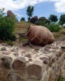 派里斯泰拉岛堡垒的黏土瓶子、墙壁和人工制品在保加利亚 库存图片
