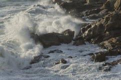 里窝那海岸的风大浪急的海面 免版税库存图片