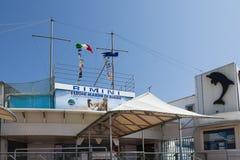 里米尼dolphinarium 免版税图库摄影
