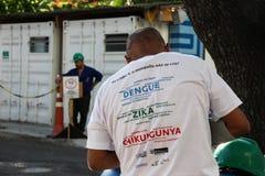 里约增强与Zika的蚊子伊蚊属aegypti的战斗 库存照片