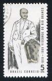 里约布兰科的贵族 免版税库存图片