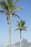 里约热内卢棕榈树两兄弟山巴西 库存照片