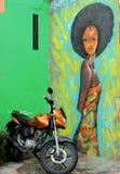 从里约热内卢的被绘的女孩 库存图片