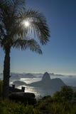 里约热内卢巴西日出棕榈树糖面包山 免版税库存照片