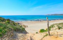 里纳majore岸在一个清楚的夏日 免版税图库摄影