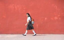 巴里阿多里德,墨西哥居民  免版税库存照片