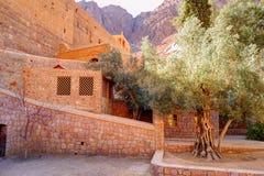 里面圣徒西奈moumtains的凯瑟琳的修道院,埃及 库存图片
