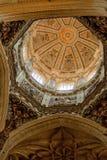 里面新的大教堂-萨拉曼卡 免版税库存图片
