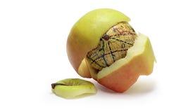 里面苹果地球 库存图片