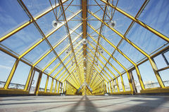 里面Andreevsky普希金桥梁 莫斯科 库存图片