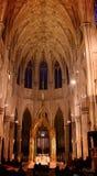 里面St Patricks大教堂 免版税库存照片