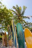 重创的Ilha :在海滩普腊亚的冲浪板大步慢跑Mendes,里约热内卢状态,巴西 免版税库存照片