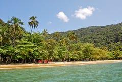 重创的Ilha :海滩普腊亚大步慢跑mendes,里约热内卢状态,巴西 库存图片