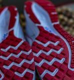 重新开始:鞋子脚底,钉,一双跑鞋的夹子 库存图片