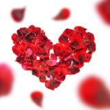 重点做的瓣上升了 在白色背景的红色玫瑰花瓣心脏 与拷贝空间的顶视图您的文本的 爱和浪漫 免版税库存图片