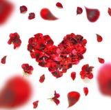 重点做的瓣上升了 在白色背景的红色玫瑰花瓣心脏 与拷贝空间的顶视图您的文本的 爱和浪漫 图库摄影