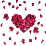 重点做的瓣上升了 在白色背景的红色玫瑰花瓣心脏 与拷贝空间的顶视图您的文本的 爱和浪漫 免版税库存照片