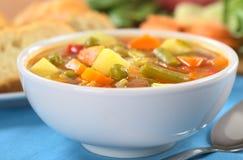 重点宏观浅汤蔬菜 免版税库存图片
