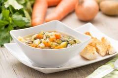重点宏观浅汤蔬菜 图库摄影