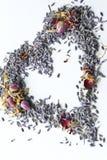 重点淡紫色杂烩 免版税库存图片