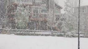 重的后院雪 影视素材