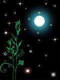 重要资料月亮天空 免版税库存照片