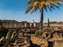 重建白色犹太教堂在Kafarnaum 免版税图库摄影