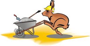 野兔工作者 免版税库存照片