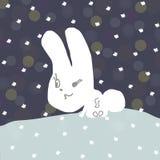 野兔电路 免版税库存图片