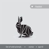 野兔的黑白图象 野兔performe的例证 库存图片