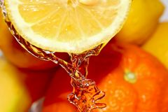野兽柠檬 免版税库存照片