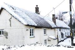 野兽的作用从东方冬天雪风暴的在Drews 库存图片