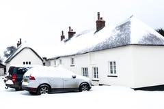 野兽的作用从东方冬天雪风暴的在Drews 库存照片