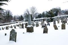 野兽的作用从东方冬天雪风暴的在Drews 图库摄影