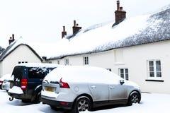 野兽的作用从东方冬天雪风暴的在Drews 免版税库存照片