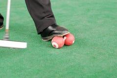 槌球比赛 免版税库存照片