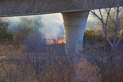 野火加利福尼亚天旱天旱 库存图片
