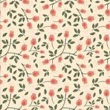 野玫瑰果无缝的背景 免版税图库摄影