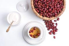 从野玫瑰果的茶在白色背景 免版税图库摄影